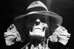Dr. Frankenstein should have left the dead rest, I only chose to show life.